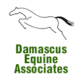 Damascus Equine Associates